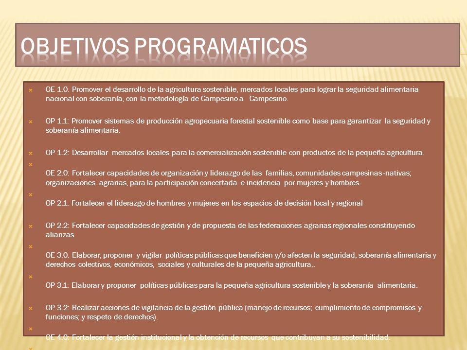 OBJETIVOS PROGRAMATICOS