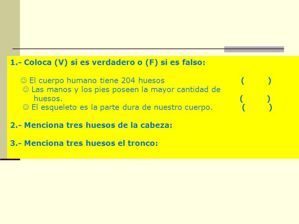 1.- Coloca (V) si es verdadero o (F) si es falso: