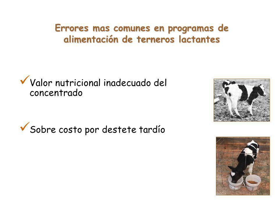 Errores mas comunes en programas de alimentación de terneros lactantes