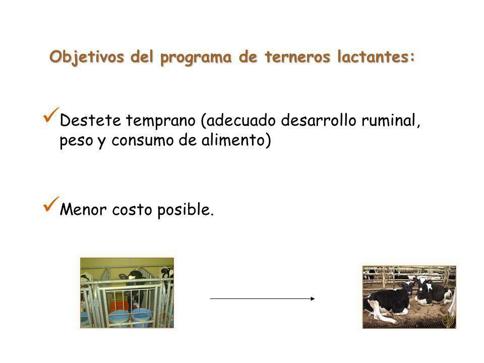 Objetivos del programa de terneros lactantes:
