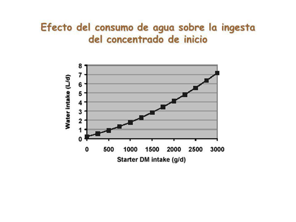 Efecto del consumo de agua sobre la ingesta del concentrado de inicio