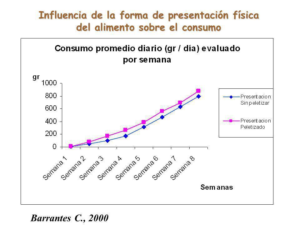 Influencia de la forma de presentación física del alimento sobre el consumo