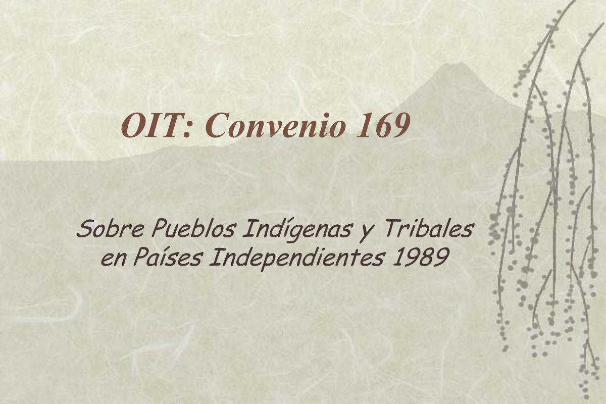 Sobre Pueblos Indígenas y Tribales en Países Independientes 1989