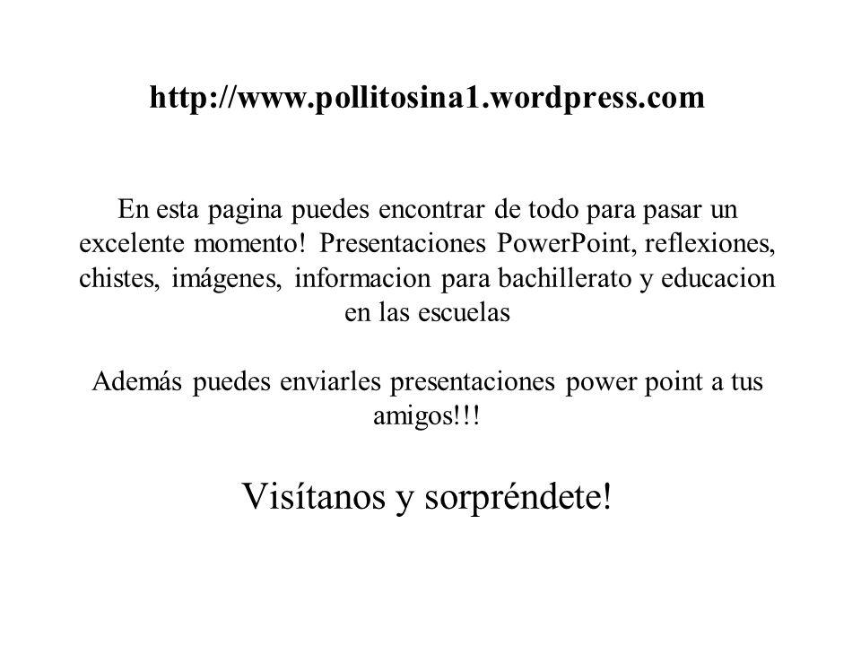 http://www. pollitosina1. wordpress