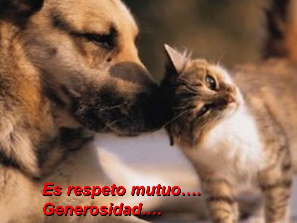 Es respeto mutuo…. Generosidad….