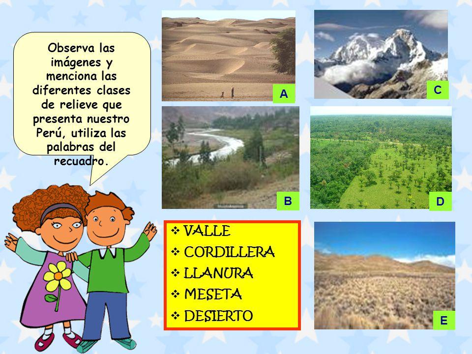Observa las imágenes y menciona las diferentes clases de relieve que presenta nuestro Perú, utiliza las palabras del recuadro.