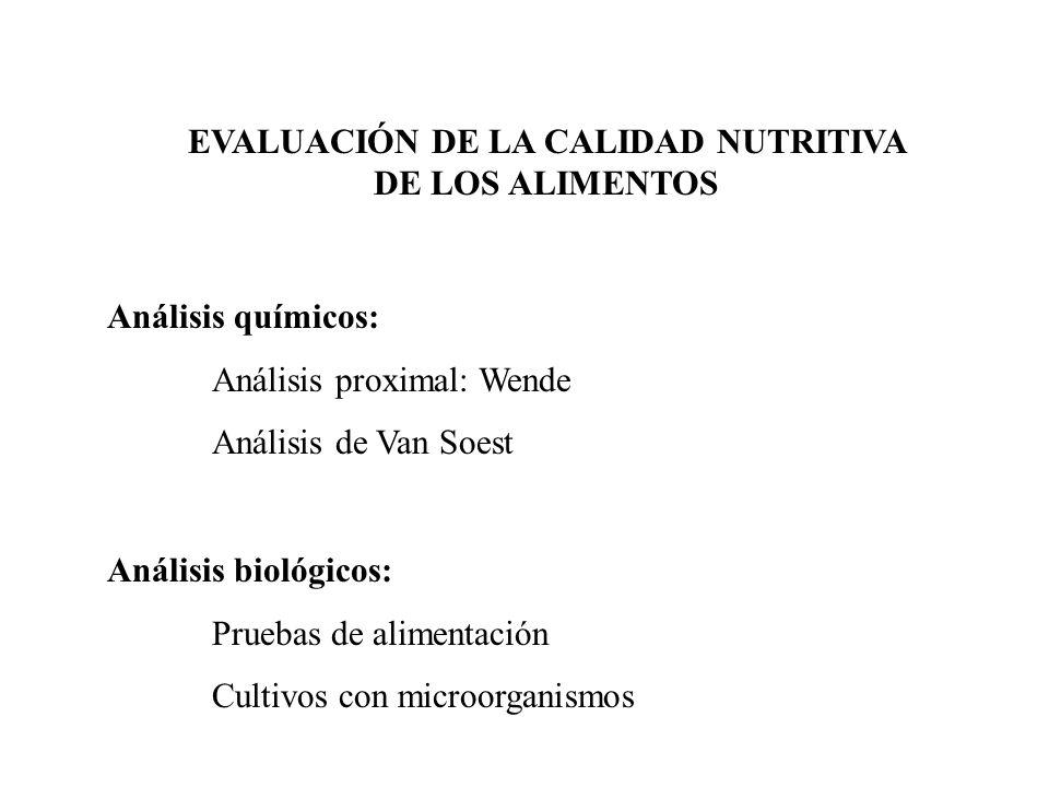 EVALUACIÓN DE LA CALIDAD NUTRITIVA DE LOS ALIMENTOS