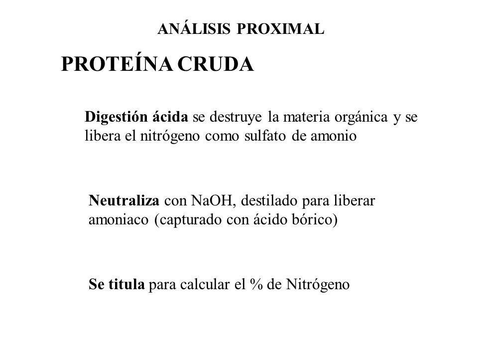 PROTEÍNA CRUDA ANÁLISIS PROXIMAL