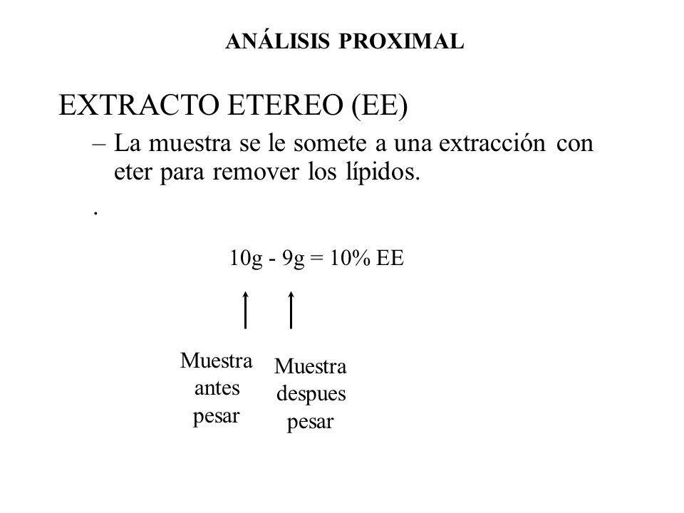 ANÁLISIS PROXIMAL EXTRACTO ETEREO (EE) La muestra se le somete a una extracción con eter para remover los lípidos.