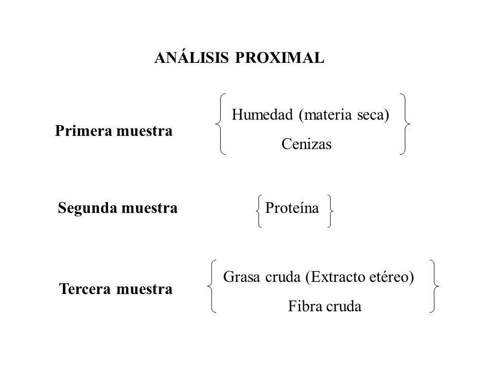 ANÁLISIS PROXIMAL Primera muestra Segunda muestra Tercera muestra