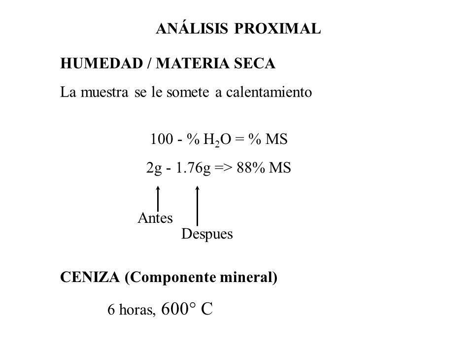 ANÁLISIS PROXIMAL HUMEDAD / MATERIA SECA. La muestra se le somete a calentamiento. 100 - % H2O = % MS.