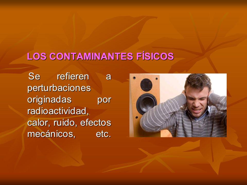 LOS CONTAMINANTES FÍSICOS