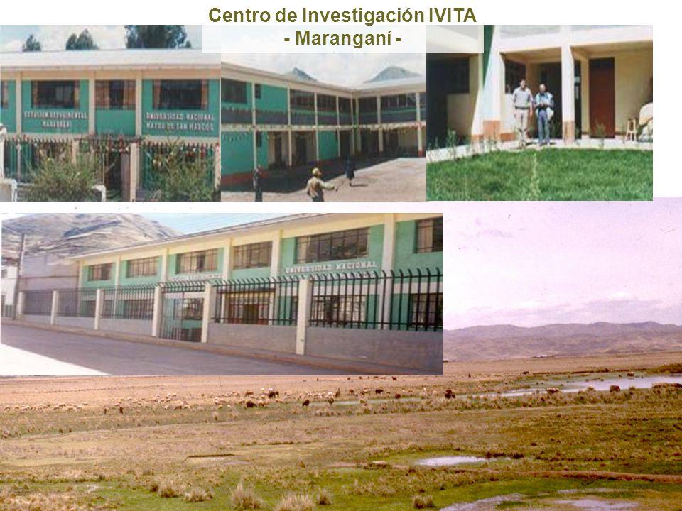 Centro de Investigación IVITA
