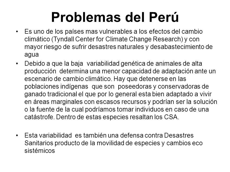 Problemas del Perú