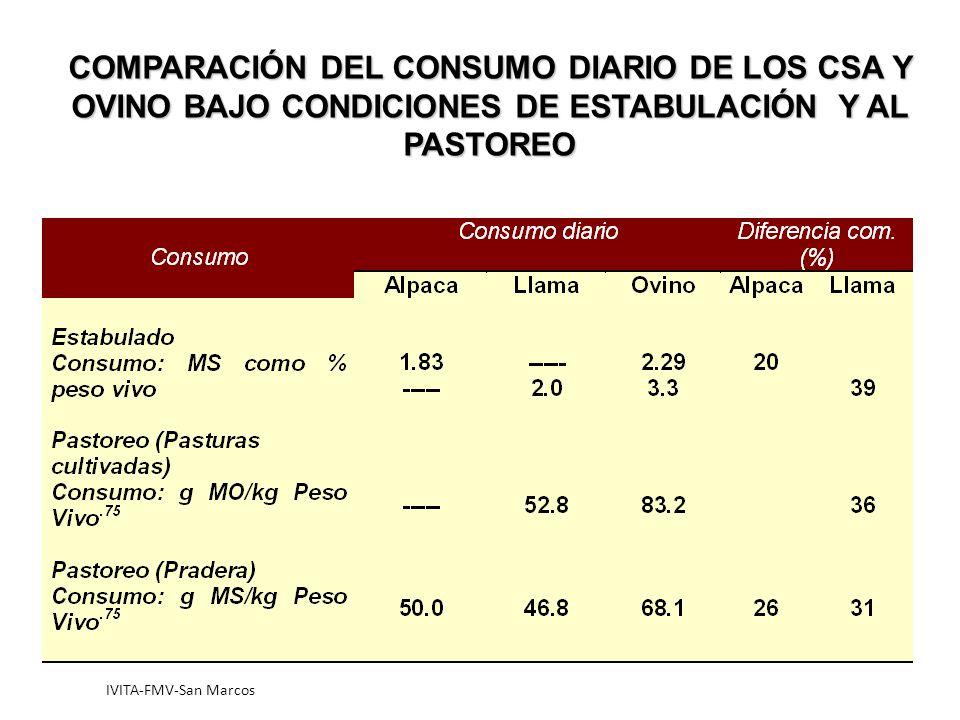 COMPARACIÓN DEL CONSUMO DIARIO DE LOS CSA Y OVINO BAJO CONDICIONES DE ESTABULACIÓN Y AL PASTOREO