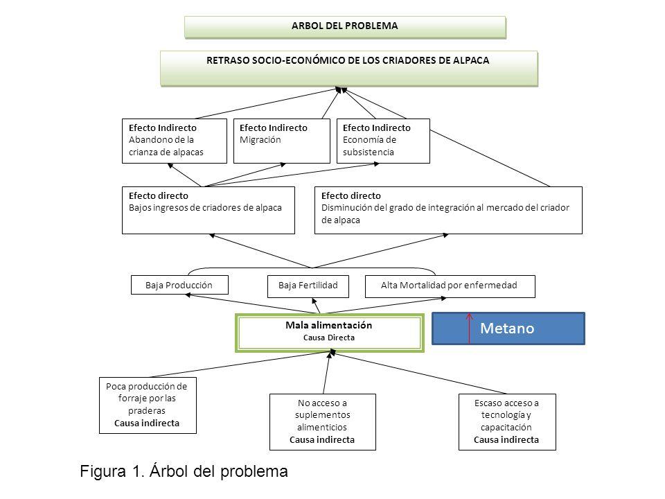 Figura 1. Árbol del problema