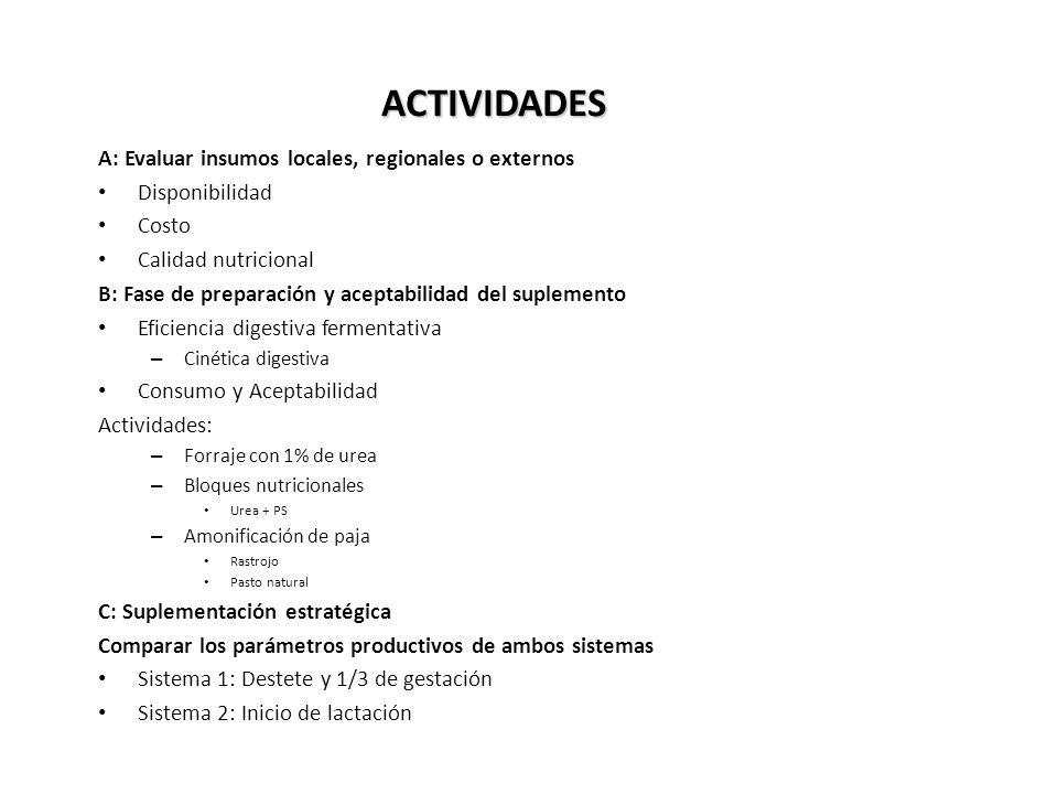 ACTIVIDADES A: Evaluar insumos locales, regionales o externos