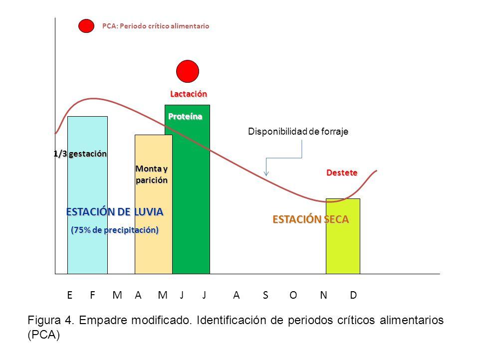 ESTACIÓN DE LUVIA ESTACIÓN SECA