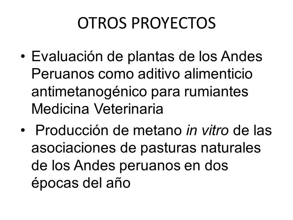OTROS PROYECTOS Evaluación de plantas de los Andes Peruanos como aditivo alimenticio antimetanogénico para rumiantes Medicina Veterinaria.