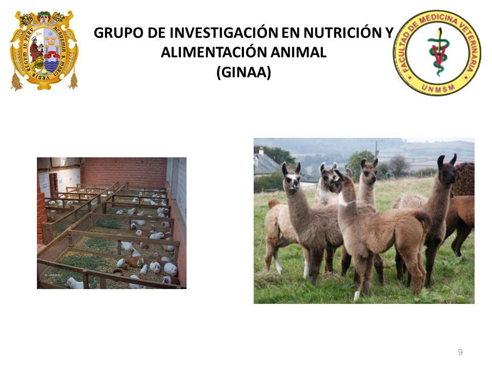 GRUPO DE INVESTIGACIÓN EN NUTRICIÓN Y ALIMENTACIÓN ANIMAL (GINAA)