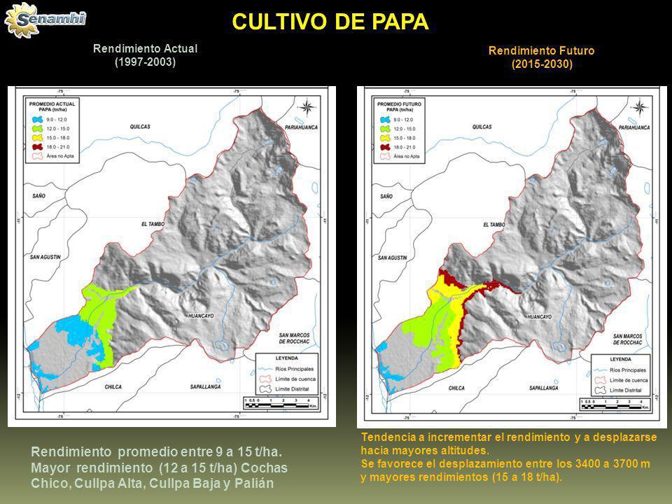 Rendimiento Actual (1997-2003)