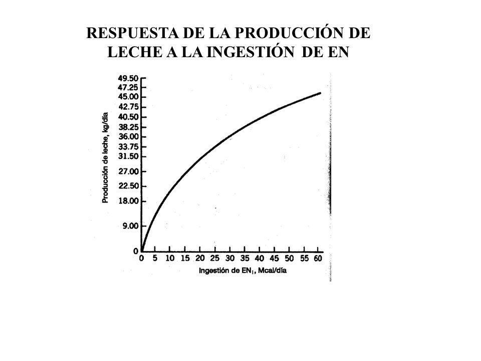 RESPUESTA DE LA PRODUCCIÓN DE LECHE A LA INGESTIÓN DE EN