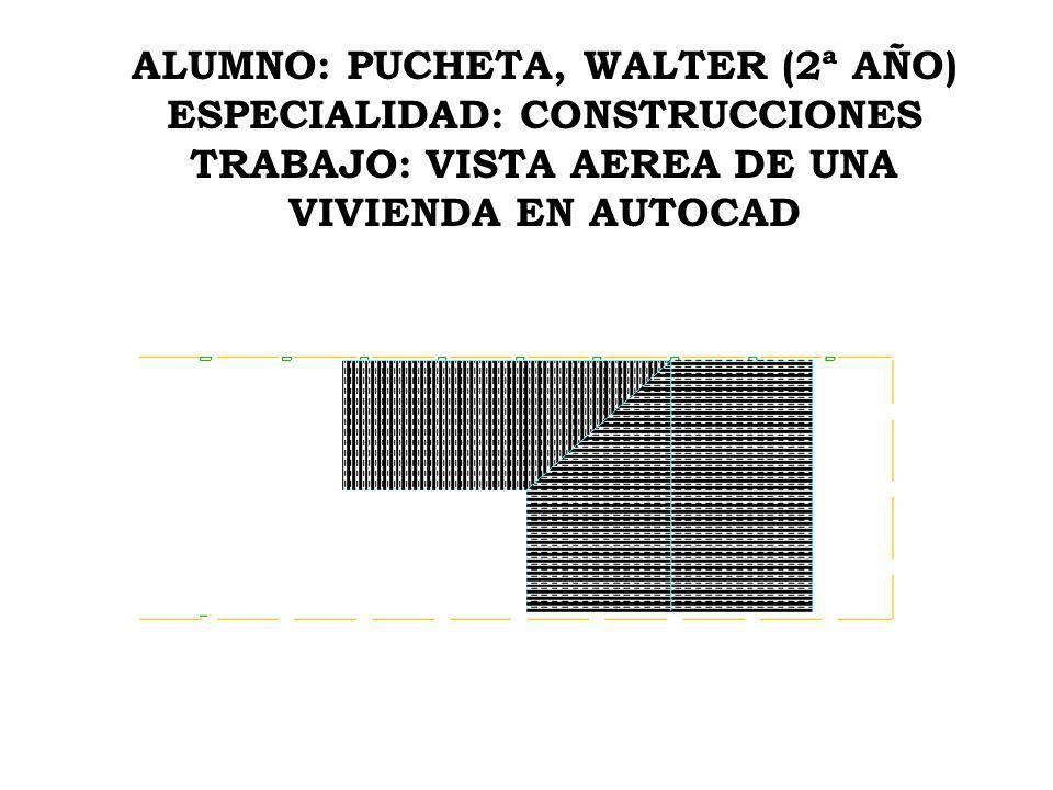 ALUMNO: PUCHETA, WALTER (2ª AÑO) ESPECIALIDAD: CONSTRUCCIONES TRABAJO: VISTA AEREA DE UNA VIVIENDA EN AUTOCAD