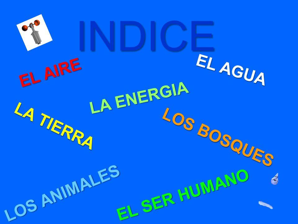 INDICE EL AGUA EL AIRE LA ENERGIA LA TIERRA LOS BOSQUES LOS ANIMALES