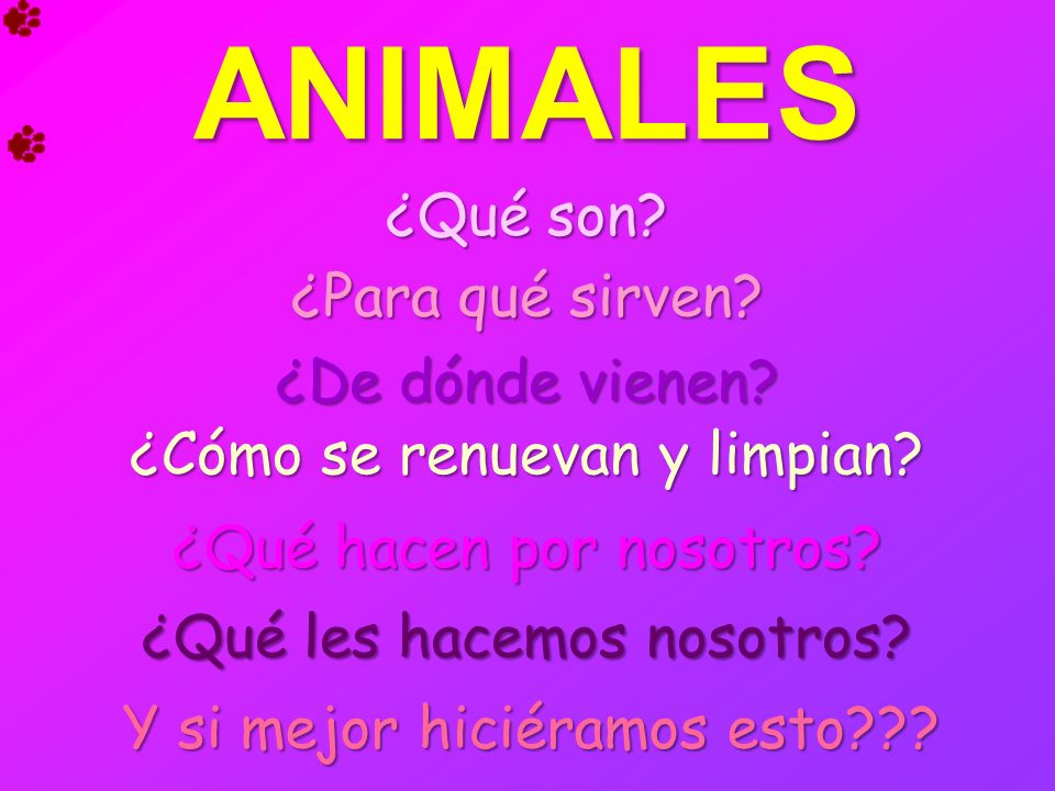 ANIMALES ¿Qué son ¿Para qué sirven ¿De dónde vienen