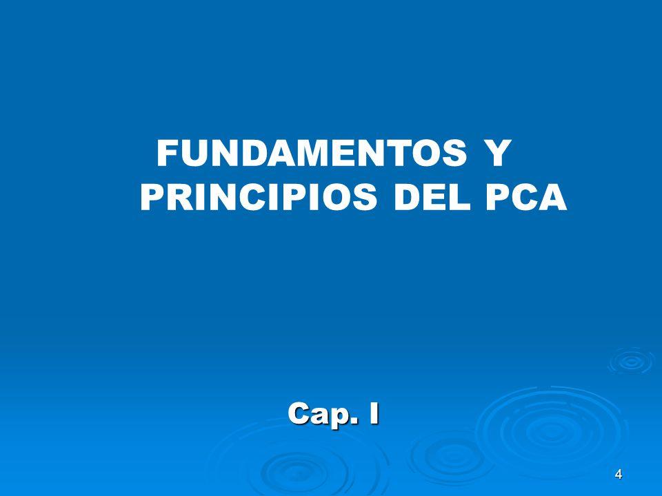 FUNDAMENTOS Y PRINCIPIOS DEL PCA