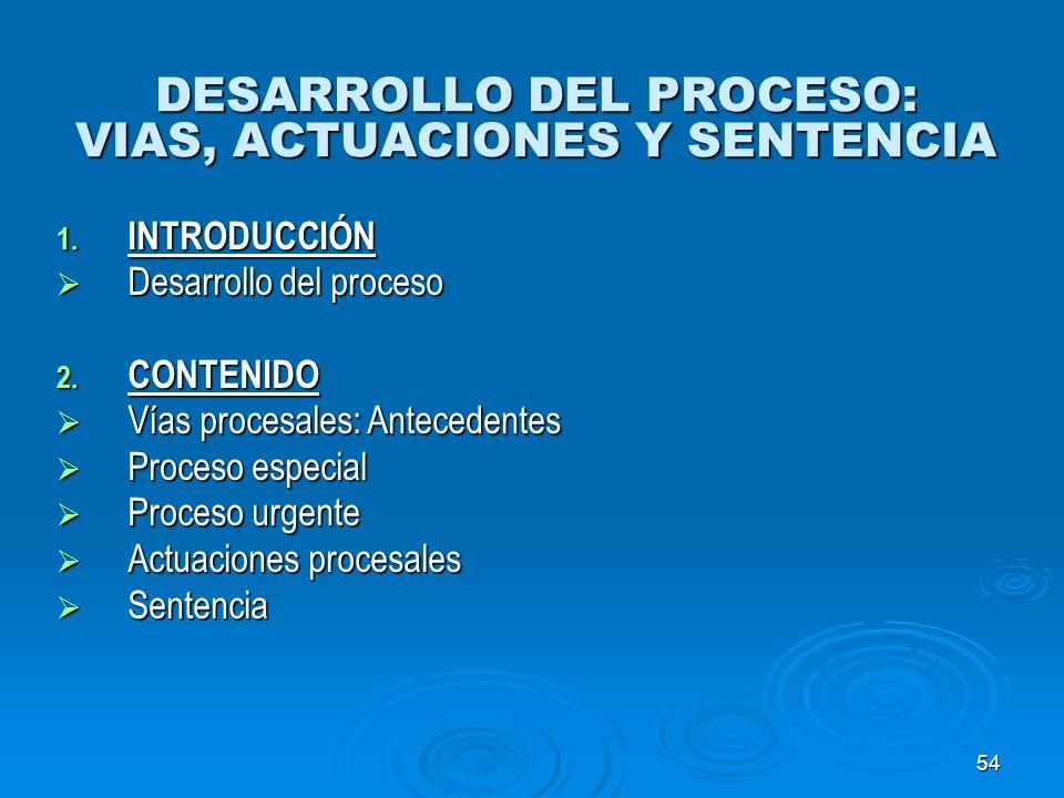 DESARROLLO DEL PROCESO: VIAS, ACTUACIONES Y SENTENCIA