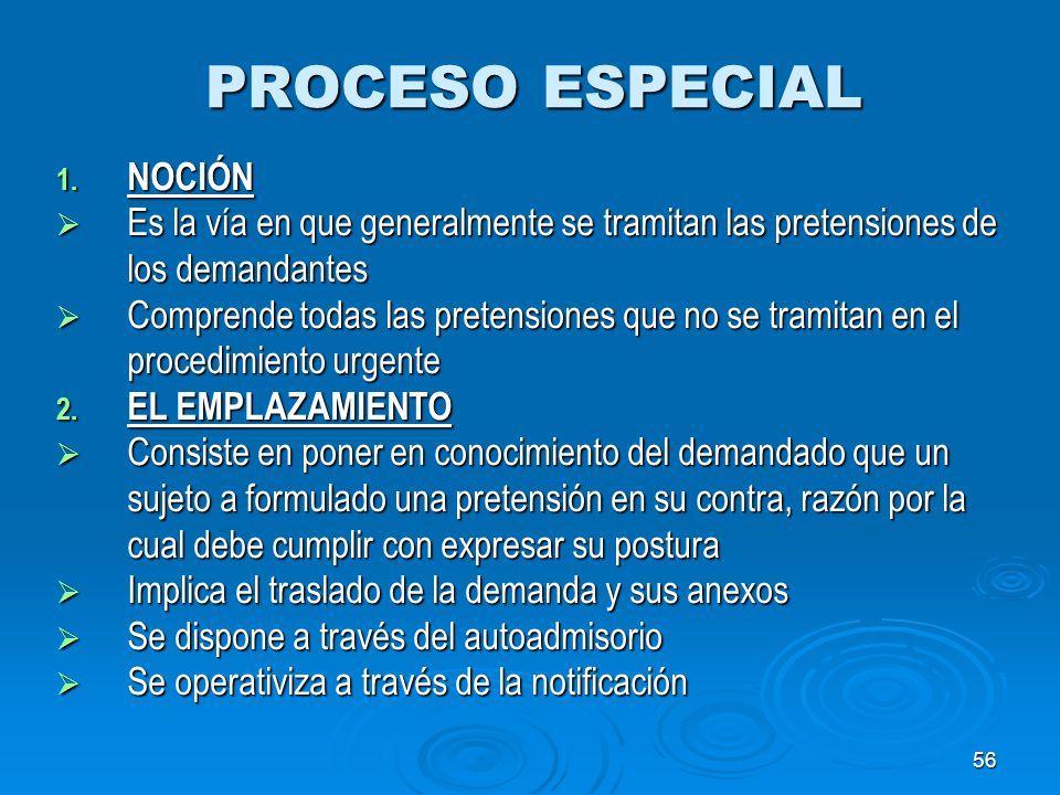 PROCESO ESPECIAL NOCIÓN