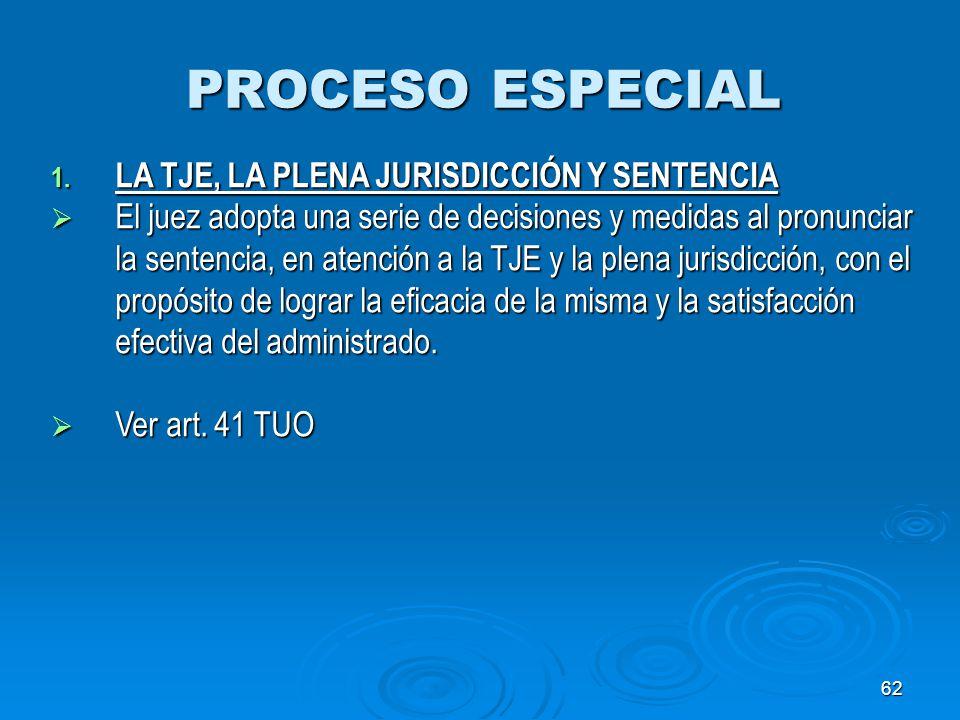 PROCESO ESPECIAL LA TJE, LA PLENA JURISDICCIÓN Y SENTENCIA