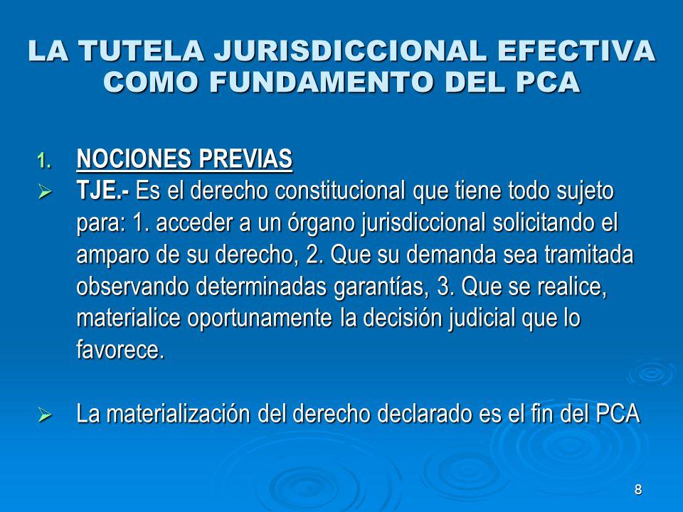 LA TUTELA JURISDICCIONAL EFECTIVA COMO FUNDAMENTO DEL PCA
