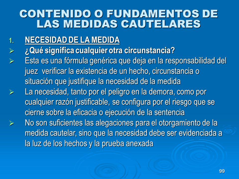 CONTENIDO O FUNDAMENTOS DE LAS MEDIDAS CAUTELARES