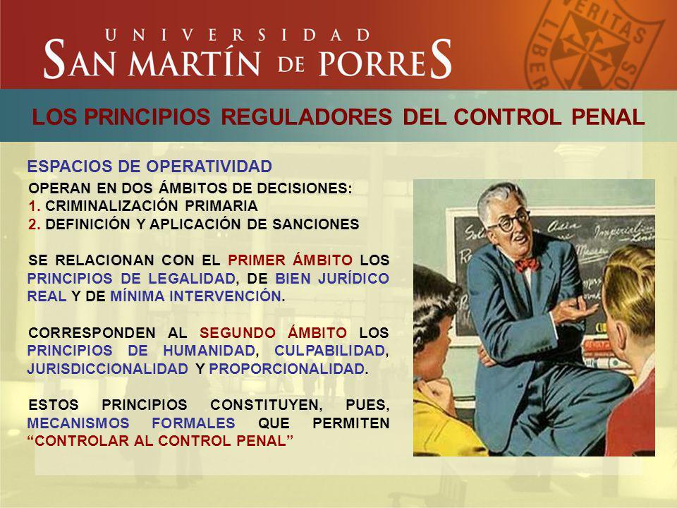 LOS PRINCIPIOS REGULADORES DEL CONTROL PENAL ESPACIOS DE OPERATIVIDAD