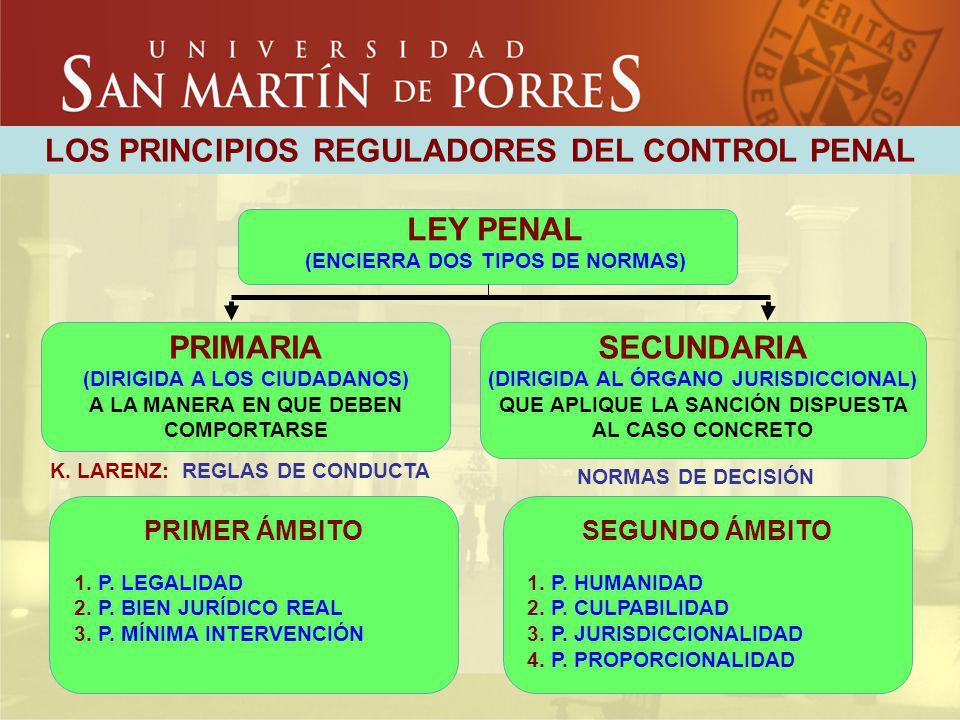 LOS PRINCIPIOS REGULADORES DEL CONTROL PENAL