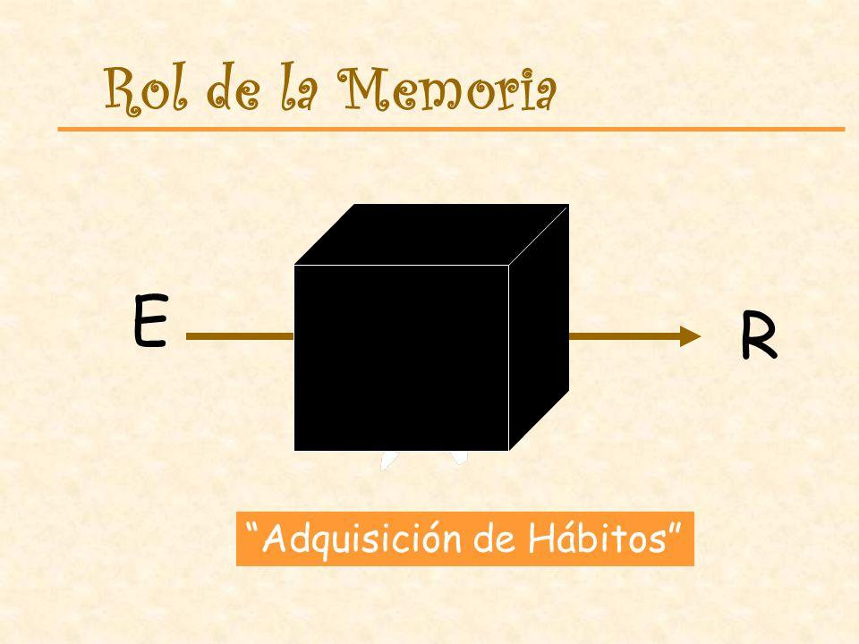 Rol de la Memoria E R Adquisición de Hábitos