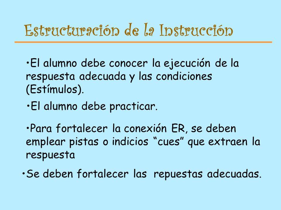 Estructuración de la Instrucción