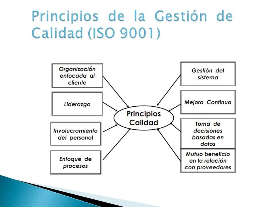 Principios de la Gestión de Calidad (ISO 9001)