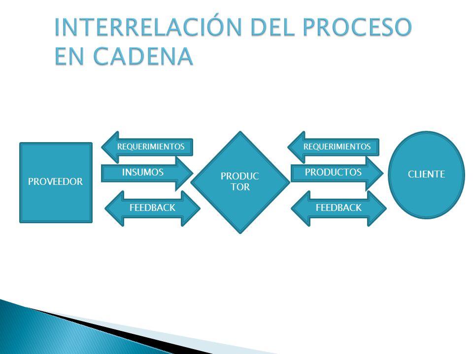 INTERRELACIÓN DEL PROCESO EN CADENA