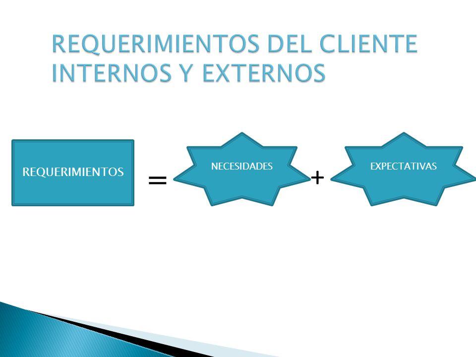 REQUERIMIENTOS DEL CLIENTE INTERNOS Y EXTERNOS