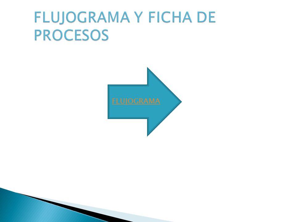 FLUJOGRAMA Y FICHA DE PROCESOS