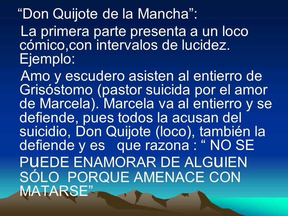 Don Quijote de la Mancha :