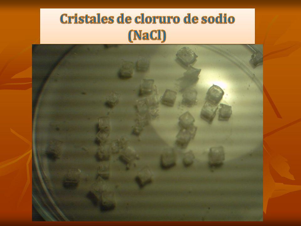 Cristales de cloruro de sodio