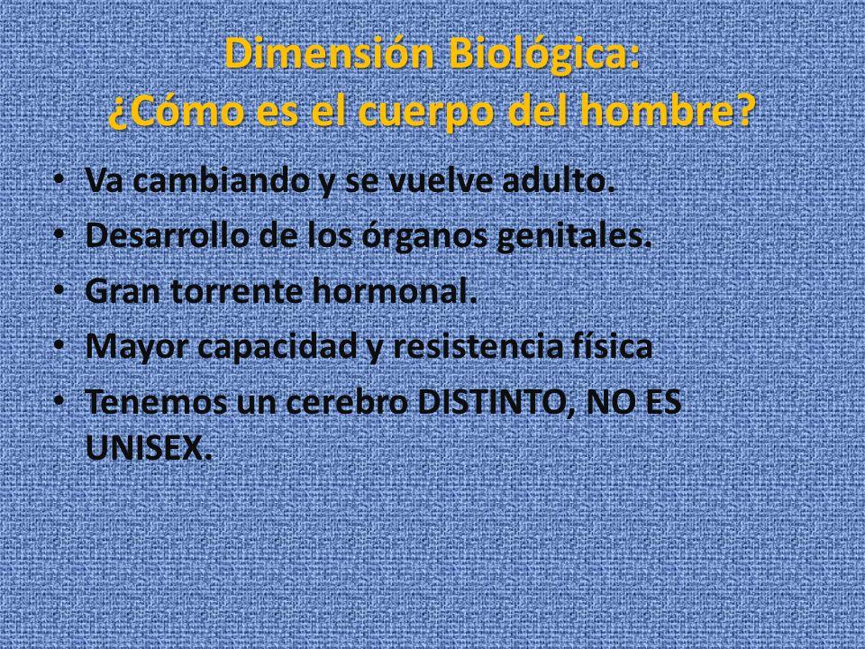 Dimensión Biológica: ¿Cómo es el cuerpo del hombre