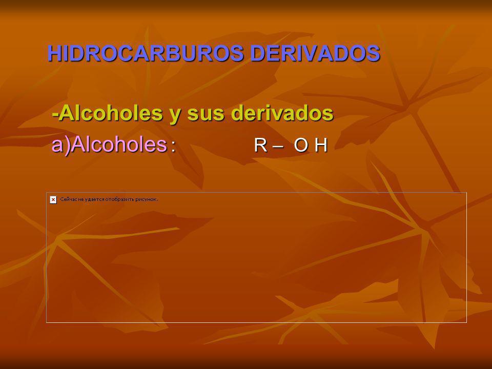 HIDROCARBUROS DERIVADOS
