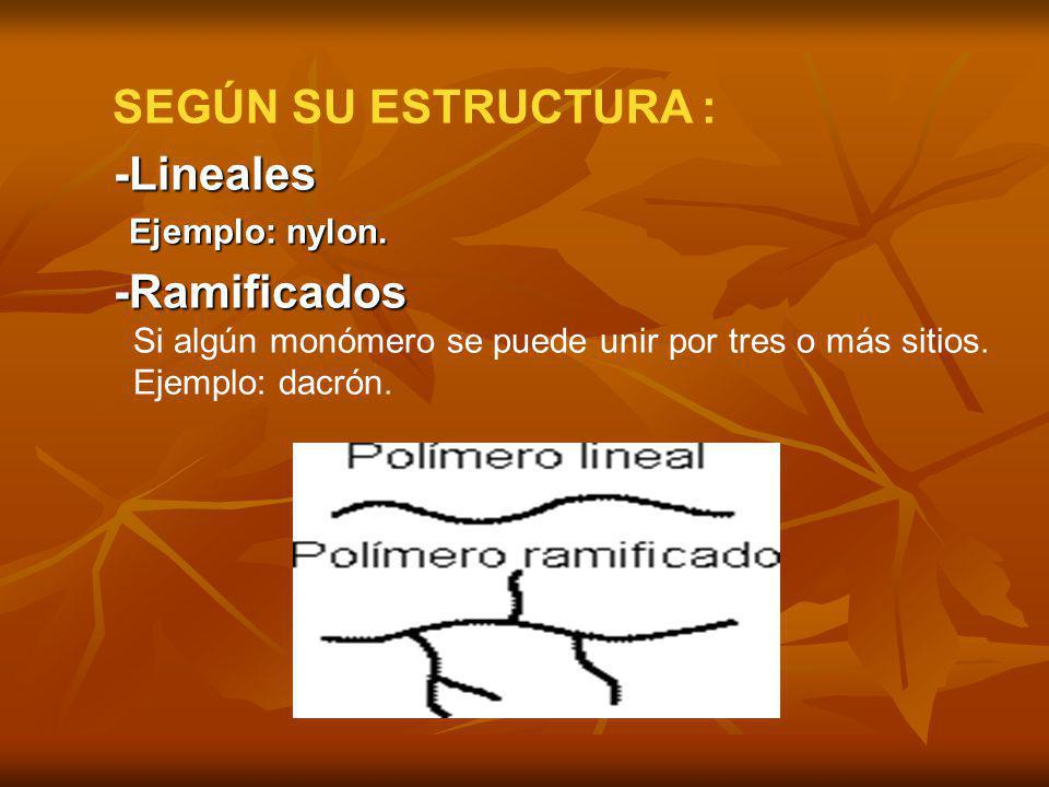 SEGÚN SU ESTRUCTURA : -Lineales