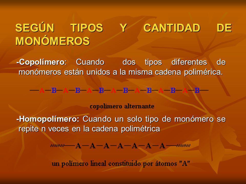 SEGÚN TIPOS Y CANTIDAD DE MONÓMEROS