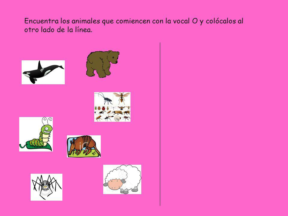Encuentra los animales que comiencen con la vocal O y colócalos al otro lado de la línea.